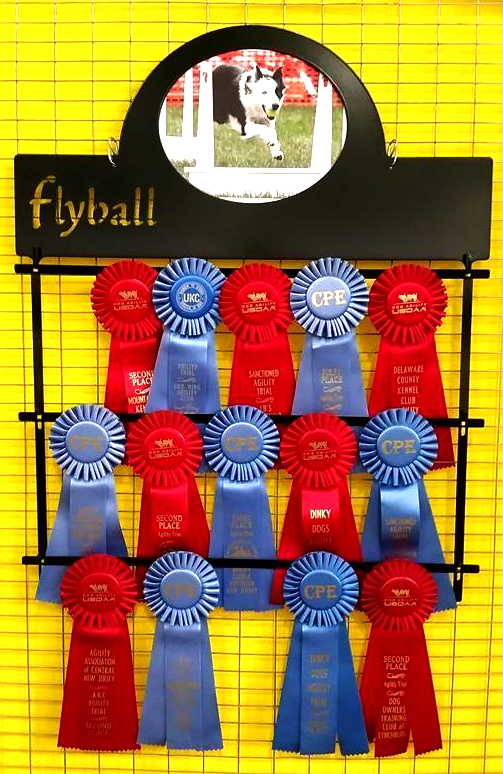 Flyball Ribbon Holder Script - $63